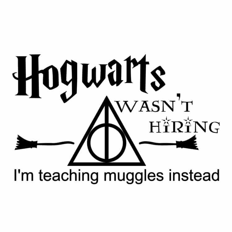 Hogwart's Wasn't Hiring-DH